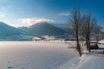 Walchsee, w tle Alpy
