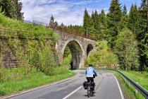 Wiadukty dawnej linii kolejowej z Langelsheim do Altenau