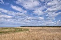 Widok na Obwód Kaliningradzki