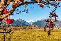 Widok na Tatry słowackie