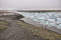 Widok na ujście Jökulsárlón do oceanu
