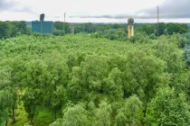 Widok z wieży na Rytterknaegten