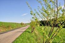 Wiosna na rowerowym szlaku w Beskidzie Niskim