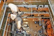 Wnętrze MUSE w Trydencie z góry