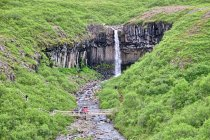 Wodospad Svartifoss koło Skaftafell