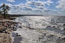Wzburzone wody Zalewu Wiślanego