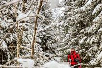 Z nartami wśród Skalnych Grzybów
