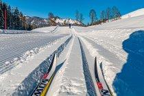 Z perspektywy nart biegowych