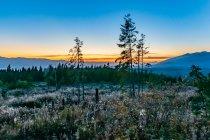 Zachód Słońca nad słowackimi Tatrami