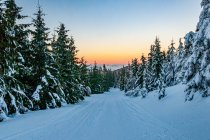 Zachód Słońca pod Śnieżnikiem