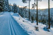 Zachodzące Słońce nad Masywem Śnieżnika