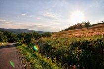 Zachodzące Słońce w Beskidzie Niskim