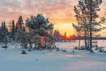 Zachodzące Słońce w północnej Finlandii