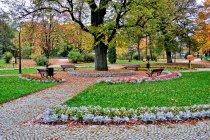 Zadbany park w Wiśle