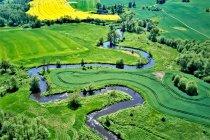 Zakola rzeki Wierzycy