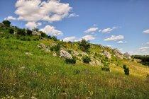 Zamkowe jurajskie wzgórze w Olsztynie
