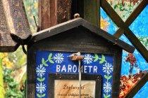 Żeglarski barometr kaszubskiego artysty