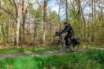 Zielone Niemcy na rowerze