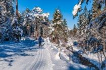 Zima na biegówkach w Tyrolu