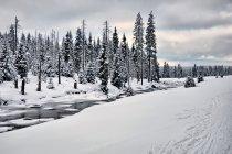 Zima nad Izerą