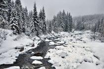 Zimowa Izera