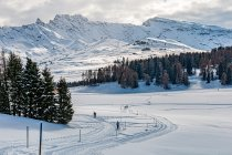Zimowe, biegówkowe klimaty