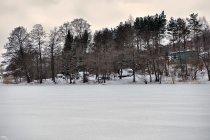 Zimowe brzegi jeziora
