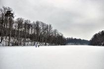 Zimowe jezioro Lubygość