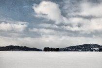 Zimowe Jezioro Ostrzyckie