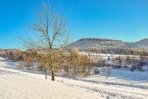 Zimowy krajobraz Gór Stołowych