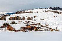 Zimowy Południowy Tyrol na Alpe di Siusi