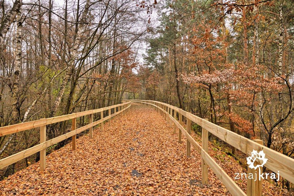 drewniane-bariery-wokol-trasy-rowerowej-