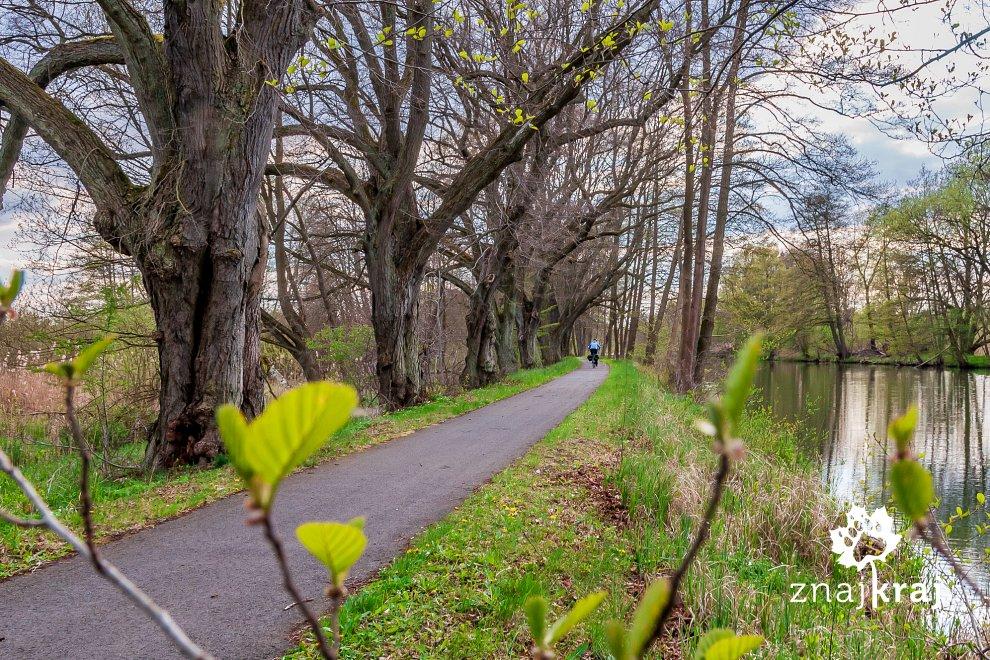 Droga rowerowa nad kanałem Finow