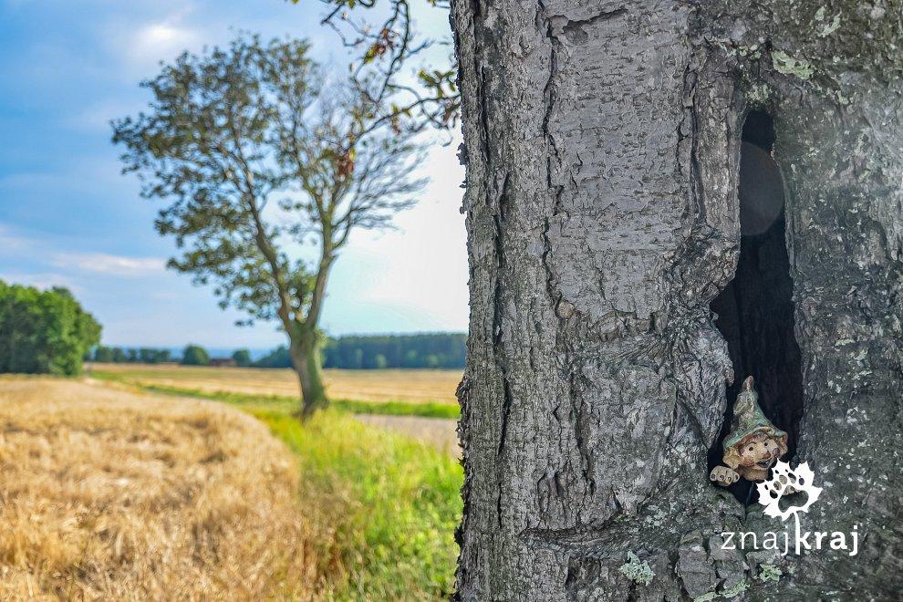 Drzewny skrzat
