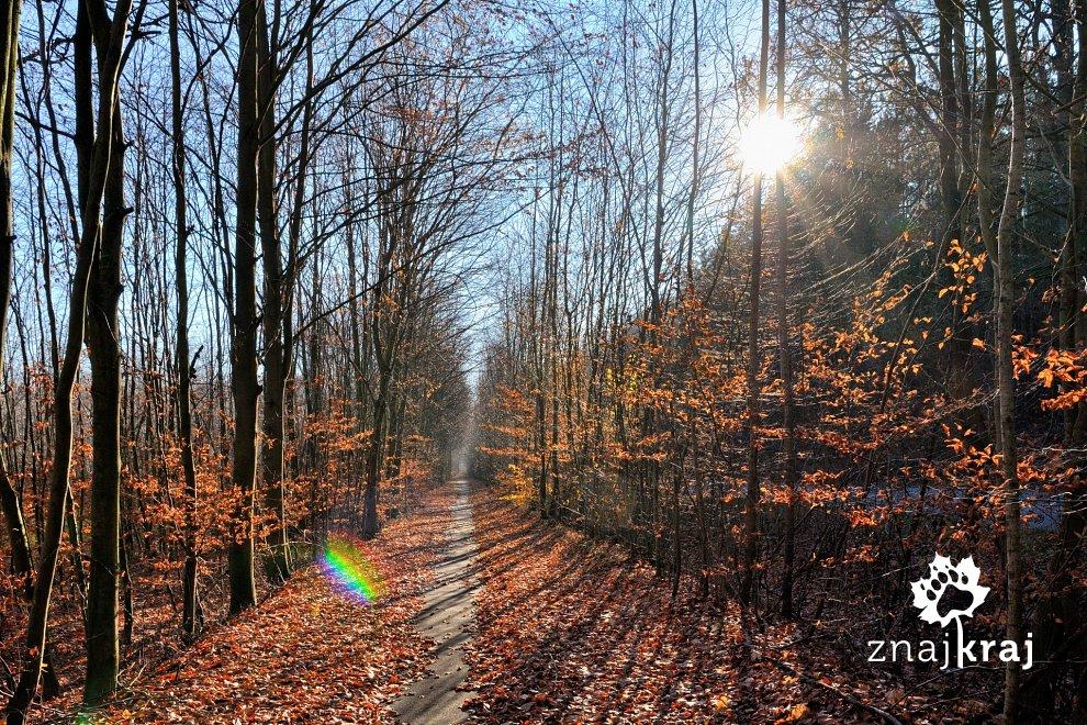 jesienny-korytarz-blue-velo-pomorze-zach