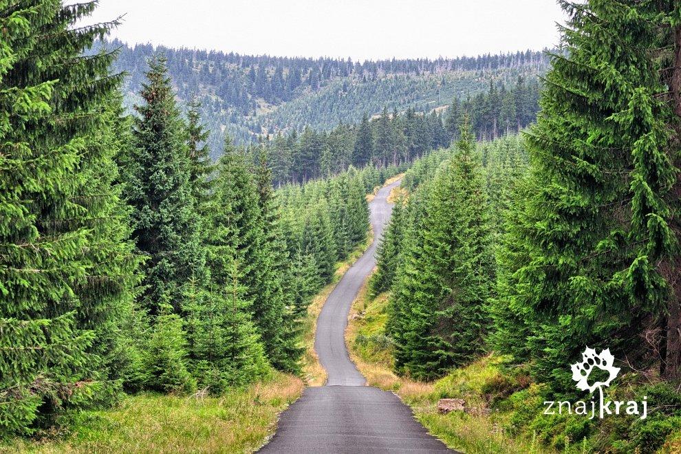 Kilkanaście kilometrów asfaltu w stronę Jakuszyc