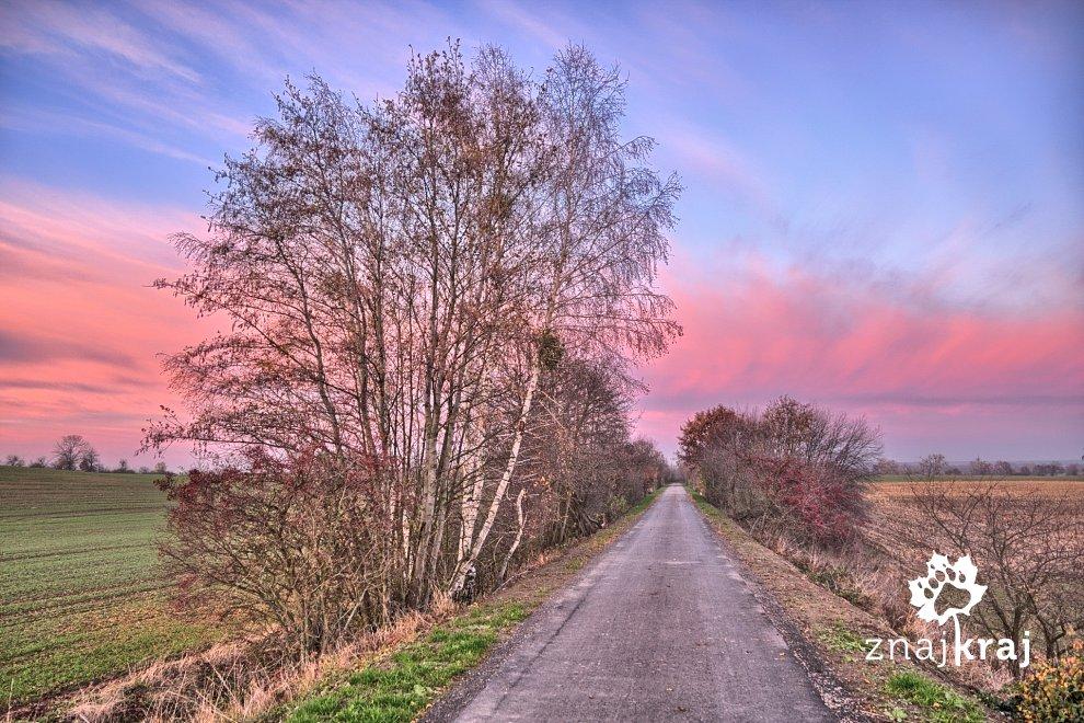 kolorowa-sceneria-trasy-rowerowej-pomorz