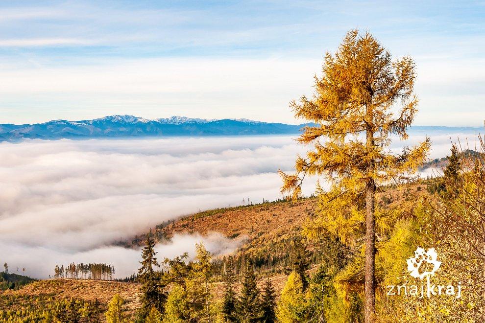 Mgły nad Kotliną Liptowską