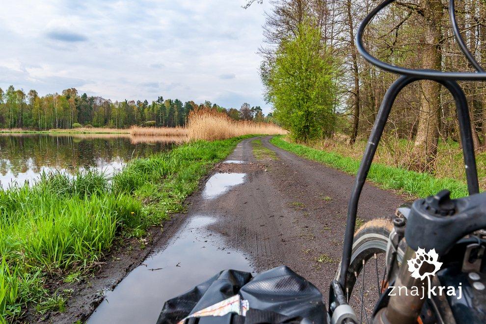Szlak rowerowy na Pojezierzu Palowickim