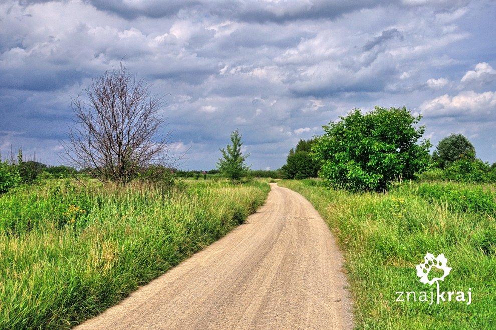 Na szlaku Green Velo przed Łańcutem