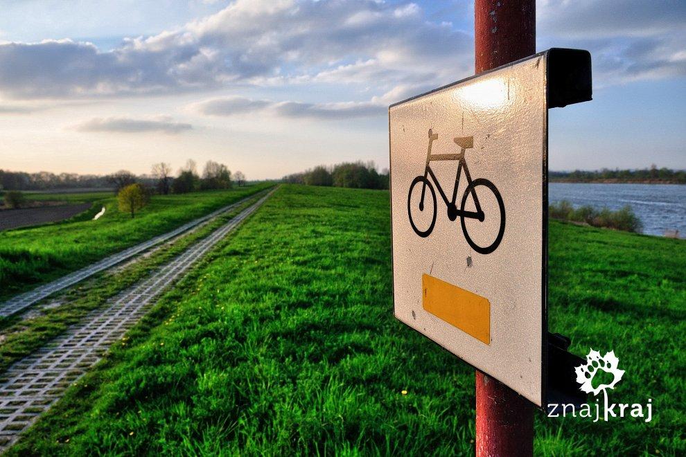 Na żółtym rowerowym szlaku nad Odrą