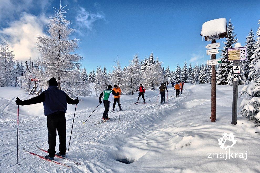 Treningi narciarskie na Rozdrożu pod Cichą Równią