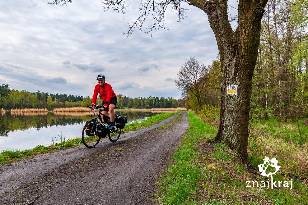 Na szlaku rowerowym na Pojezierzu Palowickim