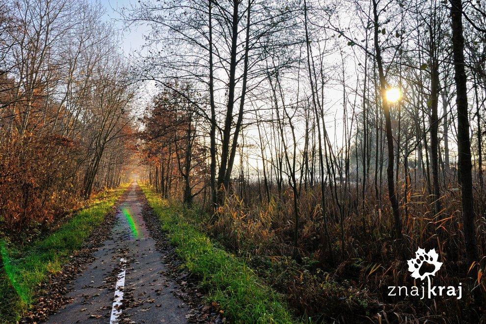 rowerem-po-linii-kolejowej-gryfino-swobn