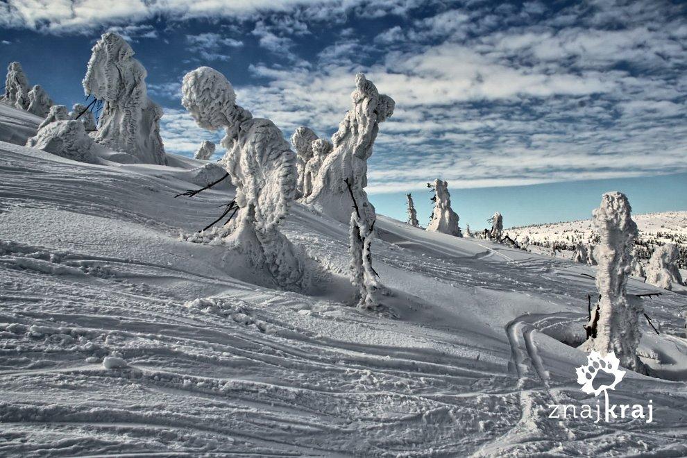 Zimowe zjawy w górach