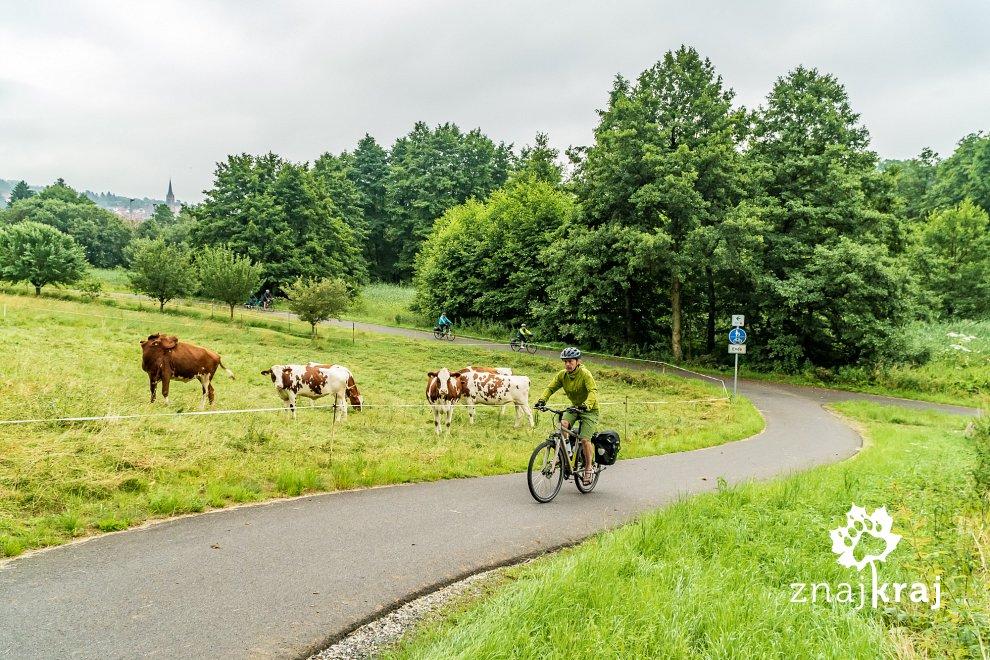 szlak-rowerowy-w-hesji-w-niemczech-hesja
