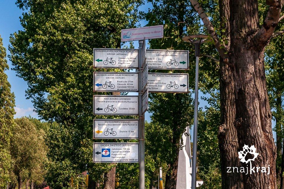szlaki-rowerowe-nad-jeziorem-malta-w-poz