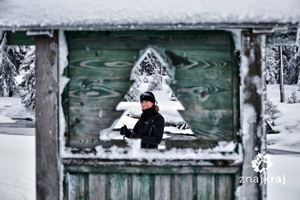 Turyści narciarscy w Górach Izerskich
