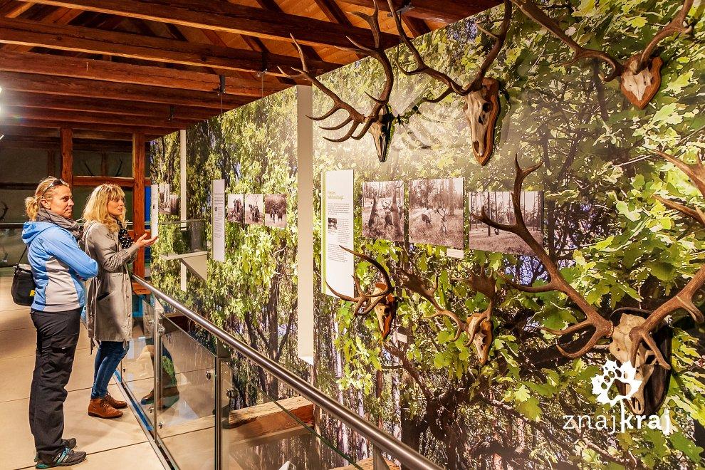 Ekspozycja w muzeum w Groß Schönebeck