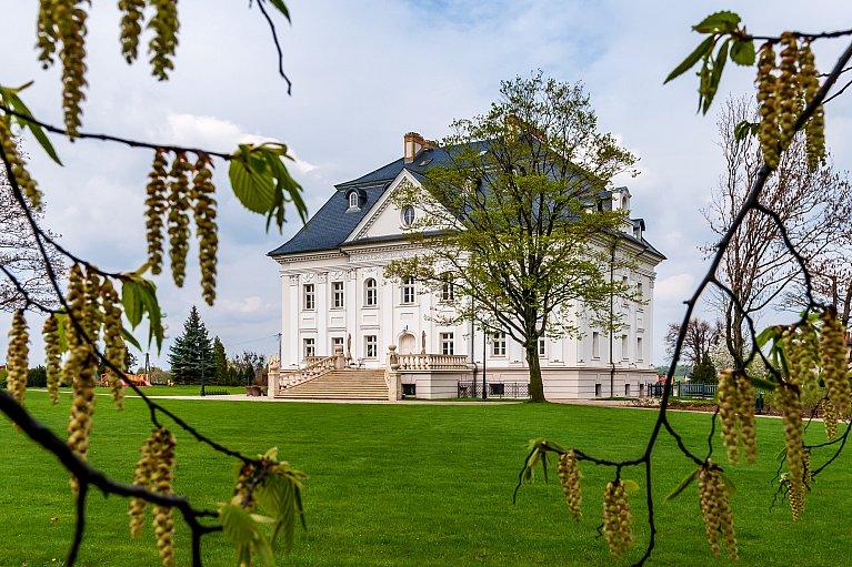 Pałac w Boryni raz jeszcze